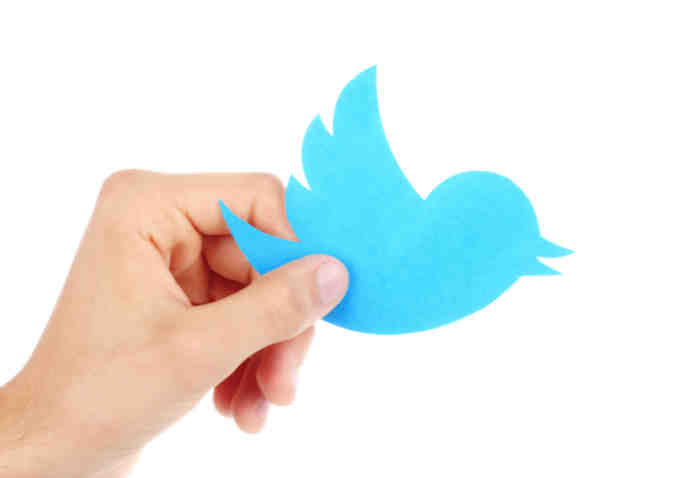 twitter-beta